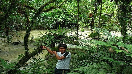 viaje a la selva